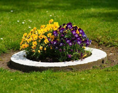 flower bed services madison